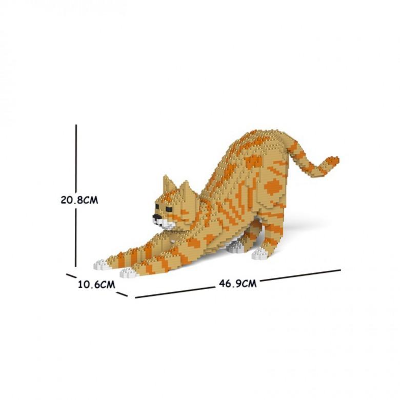 伸懒腰橘猫